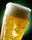 Tasse de bière Image libre de droits