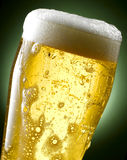 Tasse de bière Images stock