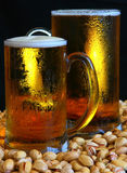 Tasse de bière Photos libres de droits