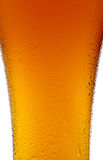 Tasse de bière avec des gouttelettes d'eau en gros plan sur le blanc Image stock