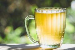 Tasse de bière non filtrée photos libres de droits