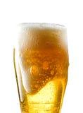 Tasse de bière sur le fond d'isolement Image libre de droits