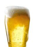 Tasse de bière sur le fond d'isolement Photographie stock libre de droits