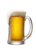 Tasse de bière Photographie stock libre de droits