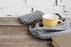 Tasse de cacao dans une écharpe grise Photos libres de droits