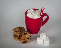 Tasse de cacao sur le fond blanc guimauves et bâton de sucrerie image libre de droits