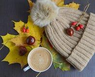Tasse de café avec des feuilles, des châtaignes et le chapeau de pompon de fourrure de faux Image stock