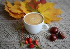 Tasse de café avec des feuilles et des châtaignes Photographie stock libre de droits