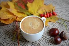 Tasse de café avec des feuilles et des châtaignes Images stock