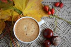 Tasse de café avec des feuilles et des châtaignes Photo libre de droits