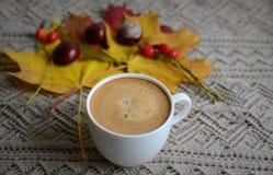 Tasse de café avec des feuilles et des châtaignes Images libres de droits