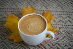 Tasse de café avec des feuilles et des châtaignes Photos stock
