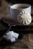 Tasse de café chaud d'expresso, et de biscuit Images libres de droits