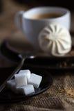 Tasse de café chaud d'expresso, et de biscuit Photo stock