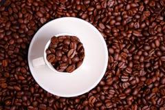 Tasse de café complètement de haricots photos libres de droits