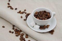 Tasse de café complètement de haricots avec du sucre photographie stock