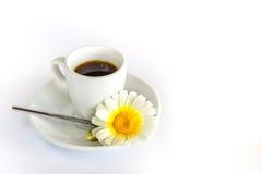 Tasse de café, de camomille et de cuillère sur le fond blanc Photos libres de droits