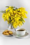 Tasse de café, de plat avec des pains grillés et de vase avec des branches de mimosa sur un fond blanc Image stock