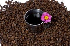 Tasse de café en acier dans les graines de café et une fleur Image stock