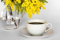 Tasse de café et de vase avec des branches de mimosa sur un fond blanc Photographie stock libre de droits