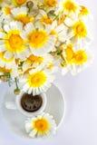 Tasse de café et un bouquet des camomiles Images libres de droits