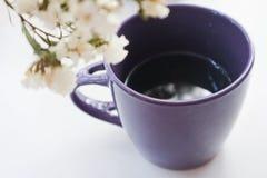 tasse de café pourpre avec un bouquet des fleurs blanches pendant le matin sur un fond blanc Photos libres de droits