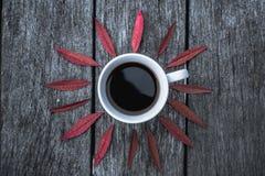 Tasse de café sur la configuration d'appartement de fond de feuilles Images stock