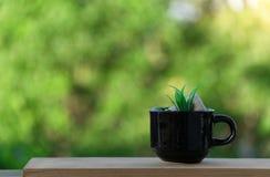 Tasse de café sur le plancher et le fond en bois de bokeh Photos libres de droits