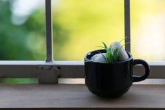 Tasse de café sur le plancher et le fond en bois de bokeh Photo libre de droits
