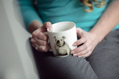 Tasse de chien Photo libre de droits
