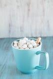 Tasse de chocolat chaud avec le bâton de menthe poivrée Photos stock