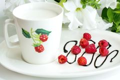 Tasse de lait avec la framboise Image stock
