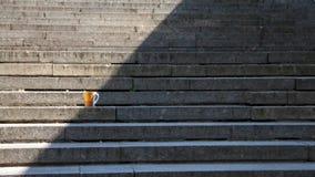 Tasse de pièce en t sur les escaliers image libre de droits