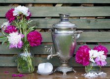 Tasse de pivoines de samovar Image libre de droits