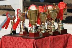 Tasse de résistance de chevaux sur la table avec des rosettes photos stock