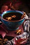 Tasse de thé épicé chaud avec l'anis et la cannelle Photos stock