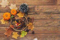 Tasse de thé épicé chaud avec l'anis et la cannelle Composition d'automne images libres de droits