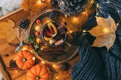 Tasse de thé épicé chaud avec l'anis et la cannelle Composition d'automne Photo libre de droits