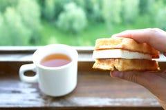 Tasse de thé Photographie stock