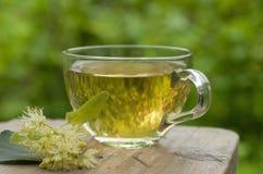 Tasse de thé Photos libres de droits