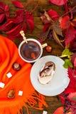 Tasse de thé avec des feuilles d'automne des raisins sauvages Image libre de droits