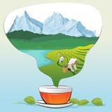 Tasse de thé avec des feuilles et des plantations de thé sous la forme de vapeur Photos stock