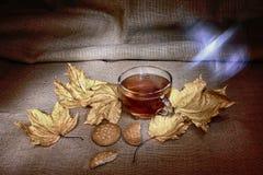 Tasse de thé avec des kukies et le leafage HDR de varm d'automne Photo libre de droits