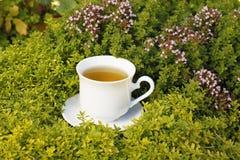 Tasse de thé avec du thé de fines herbes Images libres de droits