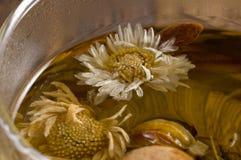 Tasse de thé avec du thé de fleur Photographie stock