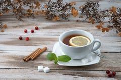 Tasse de thé avec la canneberge Images libres de droits