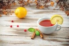 Tasse de thé avec la canneberge et le citron Photos libres de droits