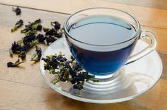 Tasse de thé bleu Photos libres de droits