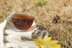 Tasse de thé chaud noir sur l'écharpe avec la feuille jaune à l'automne Image libre de droits