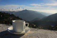 Tasse de thé contre la montagne brumeuse photographie stock libre de droits